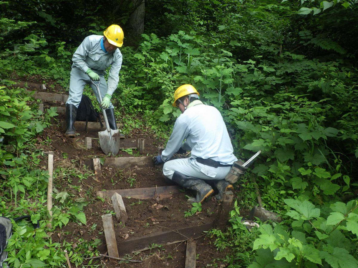 森林環境整備ボランティア